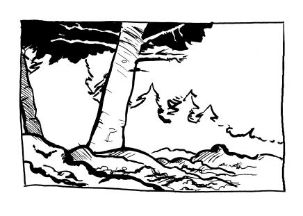 Watterson Forest