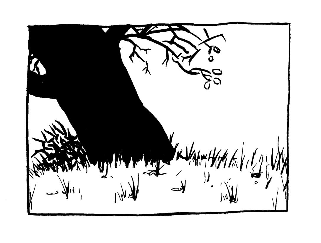 Watterson Dark Oak