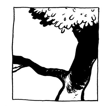 Watterson Tree Top