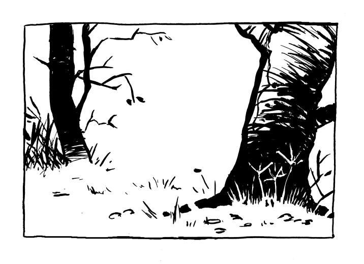Watterson Forest Walk