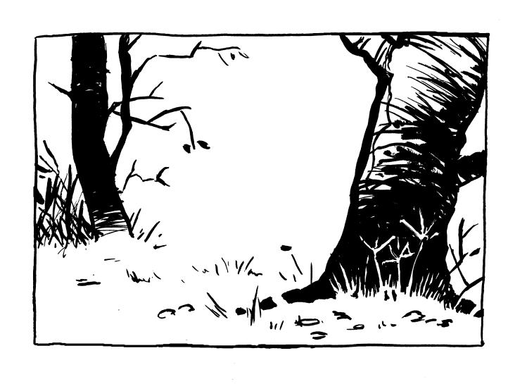 Watterson: Forest Walk