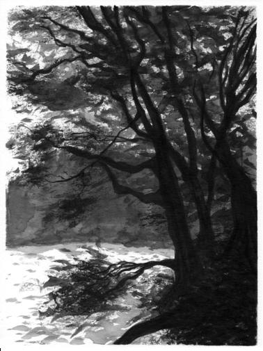 Laketrees